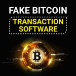 fake bitcoin transaction